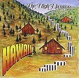 Songtexte von The High Llamas - Hawaii