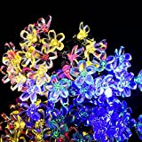 LEDGLE Solares Luces de Hadas de Cuerda, 22.9ft 50 LED Multicolor Flor Luces Decorativas de Fiesta para Jardín, Patio, Hogar, Árbol de Navidad y Fiestas