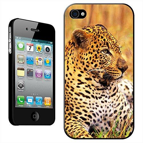 léopard coque arrière rigide détachable pour Apple iPhone modèles, plastique, Leopard Close Up, iPhone 4/4s Leopard Close Up