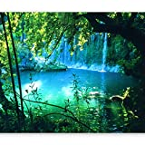 murando - Fototapete Natur 400x280 cm - Vlies Tapete - Moderne Wanddeko - Design Tapete - Wandtapete - Wand Dekoration - Landschaft Wasserfall c-B-0132-a-a