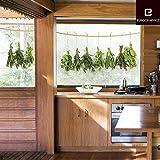 Fenstersticker Hängende Kräuter - Trägerfolie 25 x 70 cm - 3-teilig, ergibt Motivgröße etwa 64 x 24 cm