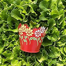 YFF Candy Color 6 color jardín macetero redondo, rojo