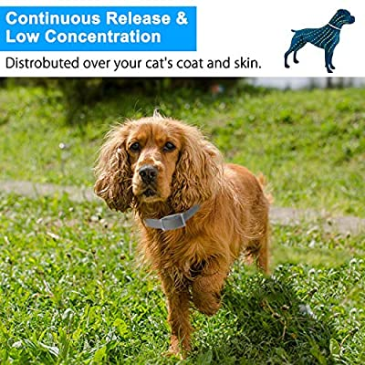 Cypin Flea and Tick Collar for Cats, 8 Months Effective Protection Waterproof Dog Anti Flea Collar, Adjustable Length 15 Inches Fits for Cats and Small Pets by Cypin