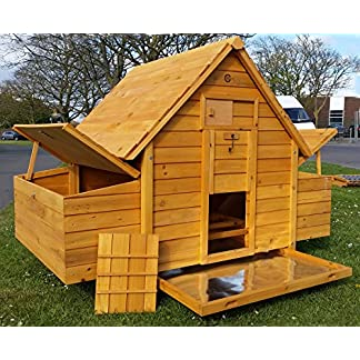 COCOON CHICKEN COOP HEN HOUSE POULTRY ARK NEST BOX NEW - LARGER MODEL 1000-2N WITH 6 NEST BOXES & CLEANING TRAY - 6 LARGE OR 8 MEDIUM OR 10 SMALL BIRDS COCOON CHICKEN COOP HEN HOUSE POULTRY ARK NEST BOX NEW – LARGER MODEL 1000-2N WITH 6 NEST BOXES & CLEANING TRAY – 6 LARGE OR 8 MEDIUM OR 10 SMALL BIRDS 61Yik1LlQVL