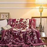 BDUK Flowers Raschel Decke dicke warme Winter eine Decke Hochzeit Feier und Cm Blumen und Rot 200*230 - Global Fortune