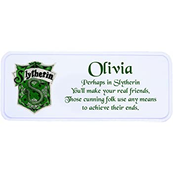 Hogwarts Slytherin House Personalised Pencil Tin Case Harry Potter Inspired