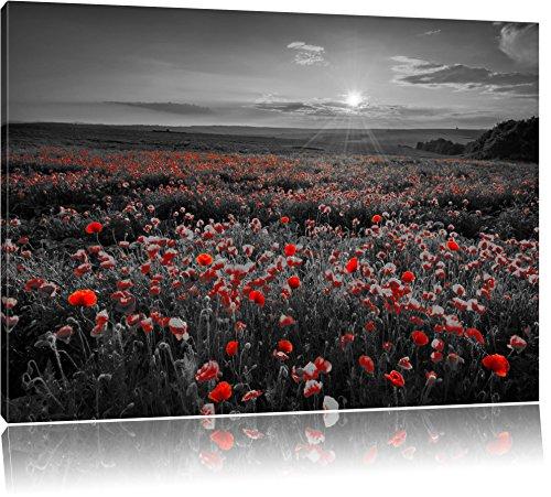 Pracht Gerahmt (tolles Mohnblütenfeld schwarz/weiß Format: 120x80 auf Leinwand, XXL riesige Bilder fertig gerahmt mit Keilrahmen, Kunstdruck auf Wandbild mit Rahmen, günstiger als Gemälde oder Ölbild, kein Poster oder Plakat)