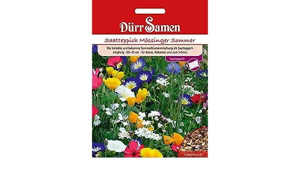 Saatteppich Mössinger Sommer Dürr Samen