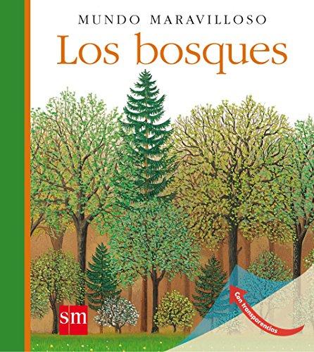 Los bosques (Mundo maravilloso)