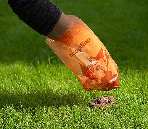 350 Hundekotbeutel ˁ°ᴥ°ˀ umweltfreundlich | biologisch abbaubare Gassibeutel-Alternative | Nachfüllpack z.B. für pooplino Hundekotbeutelspender - 3