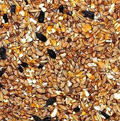 20kg Garvo 4140 Körnermischfutter mit Grit und Sonnenblumenkerne von Garvo auf Du und dein Garten