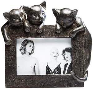 kare bilderrahmen junge katzen. Black Bedroom Furniture Sets. Home Design Ideas