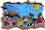 Pixxprint 3D_WD_S2562_62x42 wundervolle Fische im Korallenriff Wanddurchbruch 3D Wandtattoo, Vinyl, bunt, 62 x 42 x 0,02 cm