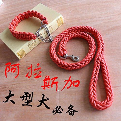 ZPP-Prodotti in PET in nylon serie stereotipata semi-catena p pet collare guinzaglio cane guinzagli,rosso,L