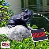 Amur GARTENBRUNNEN SOLAR BRUNNEN SOLARTEICHPUMPE SOLAR SPRINGBRUNNEN SOLAR WASSERSPIEL MÄRCHEN-Frosch ZIERBRUNNEN Frosch VOGELBAD SOLAR PUMPE Solar Teichpumpe SOLAR Set für Garten Teich TERRASSE