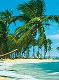 Fototapete, South Sea, 4-teilig - 183x254cm, Motivtapete, Bildtapete, Karibik, Südsee, Malediven, Palmenstrand, Palmen, Strand, Strandmotiv - Wall Mural, gestochen scharfe XXL-Ansicht verfügbar.