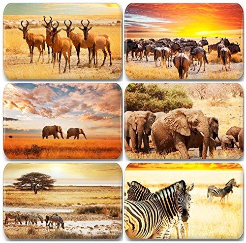 Möbel Fan (Merchandise for Fans Afrika Savanne Tiere Zebra Elefant - 6 rechteckige Kühlschrankmagnete 7X 4,5 cm - 01 für Memoboard Pinnwand Magnettafel Whiteboard)