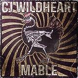 Songtexte von CJ Wildheart - Mable