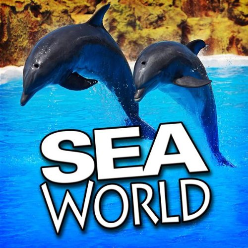several-seals-barking-sea-world-sounds