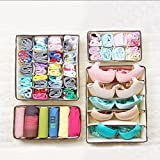 Angker klappbar Closet, BH Unterwäsche Schublade Organizer, Faltbar Aufbewahrungsboxen Set 4Kleidung, Unterwäsche, Krawatten, Socken,