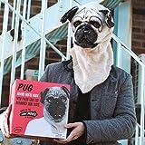 Hunde Maske - Mr. Mops   Hundemaske   Karneval   Verkleidung   Gruppenkostüm   Preis am Stiel