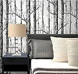 H&M Hochwertige Non-Woven-moderne einfache 3D Schwarz-Weiß-Bäume Wallpaper Wohnzimmer Restaurant TV Wand Schlafzimmer Dekoration Tapete 0.53m * 10m-schwarz und weiß