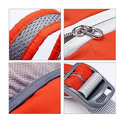 IOKHEIRA 10L Zaino Ultra-Light Zaino Pieghevole Zaino Packpack Daypack Tasca Nylon impermeabile Outdoor Sport Unisex Ciclismo Scuola Stile Escursionismo Trekking Camping Borsa da viaggio Blu