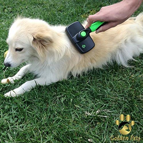 Golden Pets selbstreinigende Hundebürste & Katzenbürste | ALL-IN-ONE-Pflege für kurz-Langhaar geeignet | Einfache Reinigung durch EASY-CLEAN-Funktion | TOP Fellpflege für Ihren tierischen Freund - 6