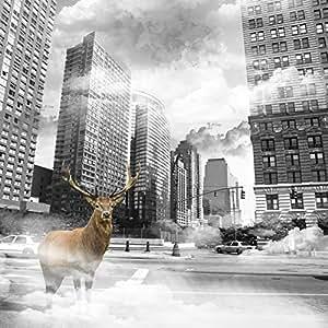 Artis 601856 Décoration Murale Toile Imprimée Cerf NYC 70 x 70 cm