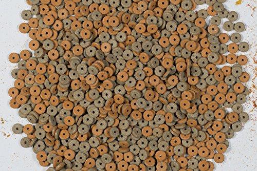 Tetra FunTips Tablets Haft-Futtertabletten, Hauptfutter, haftet an der Scheibe, zum Fische beobachten, 300 Tabletten - 3