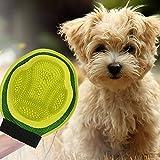 Rainbowsun Premium Hund Fellpflege Handschuh Doppelseitig Massagehandschuh mit TPE Gummi Noppen 19*24 cm Grün