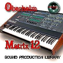 Exterior doméstica de matriz 12 – King Of Analog Sounds – Unique Original Huge 24bit Wave