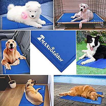 Lauva Dog Cool Mat, Dogs Self Cooling Non-Toxic Gel Mat Pads Mattress Pet Cat Cool Beds Extra Large for Dog Crates… 2