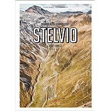 Stelvio: Porsche Drive - Pass Portrait - Italy - 2757 M