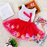 #4: PoshTots London 1 - 2 Years Baby Girls Princess First Birthday RED Party Wear Flower Frock Dress