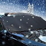 Big Ant coche parabrisas cubierta de nieve–hielo, sol, Frost y a prueba de viento en todo tipo de clima, multi-used como al aire libre Picnic alfombrillas, Yoga Mat, tienda de campaña para dormir y # xFF08; 197cm * 70cm y # xFF09;