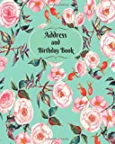 Address and Birthday Book: Pink And Blue Floral Design Address Logbook, Phone Numbers, Email and Birthday Information, Alphabetical Addresses ... Volume 15 (Contact Address Log Books)