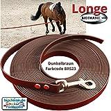 Longe Longierleine für Pferde 16mm aus Beta BioThane®, Pferdelonge für Reitsport, 10 Meter lang in Dunkelbraun