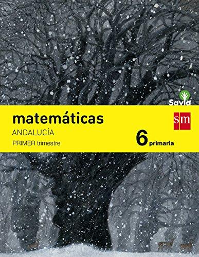Matemáticas. 6 Primaria. Savia. Andalucía  - Pack de 3 libros - 9788467575842