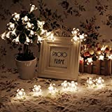 ANKKO 4M Peach Blossom 40 LED Fairy String Lights Warm White