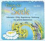 Vision der Seele: Lebenssinn – Erfolg – Begeisterung – Seelenweg - Vier geführte Meditationen