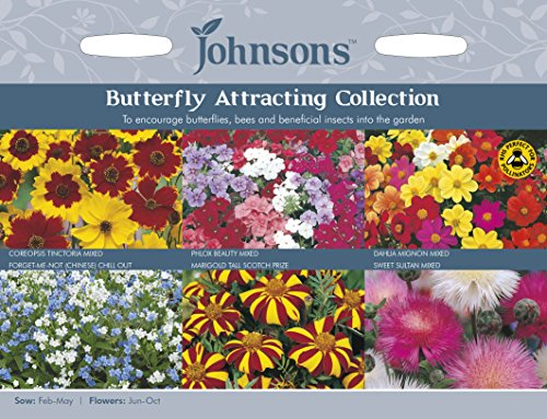 johnsons-uk-jo-fc-butterfly-attracting-collection