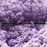 Trentemøller: Into The Great Wide Yonder [Vinyl LP] (Vinyl)