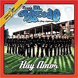 Songtexte von Banda El Recodo - Hay amor