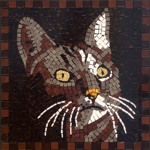 mosaico-kit-20x20-cm-gatto