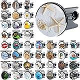 Waschbeckenstöpsel Seesterne Grau, viele schöne Waschbeckenstöpsel zur Auswahl, hochwertige Qualität ✶✶✶✶✶