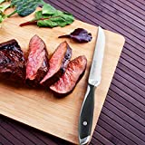 Homgeek Steakmesser Set, 6 Stück Fein Gezahnte Steakmesser, Aus Edelstahl mit Ergonomischem Griff - 6