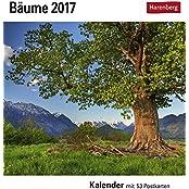 Bäume - Kalender 2017: Kalender mit 53 Postkarten