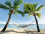 Artland Qualitätsbilder I Poster Kunstdruck Bilder 40 x 30 cm Landschaften Amerika Karibik Foto Blau B6VD Urlaub Palmen Strand Hängematte