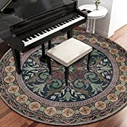 Area Rug Living Room Bedroom Rugs and Mats Round Soft Touch Carpet ,Kid Room Home Hotel Office 120cm*120cm